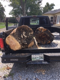 Raw logs in truck